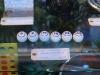 lotto_balls