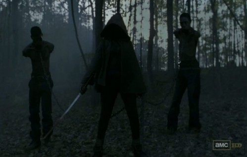 Michonne-Walking-Dead-Season-3