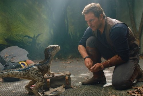 chris-pratt-dumb-jurassic-world